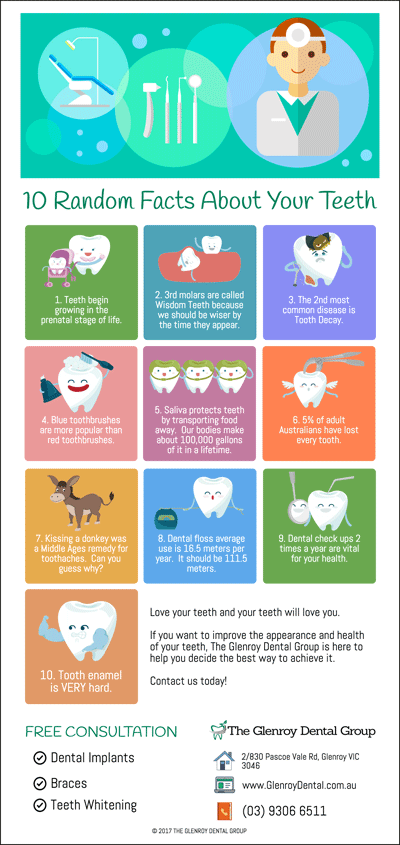 10 Random Facts About Your Teeth